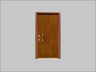 Alüminyum Decoral Çelik Kapılar